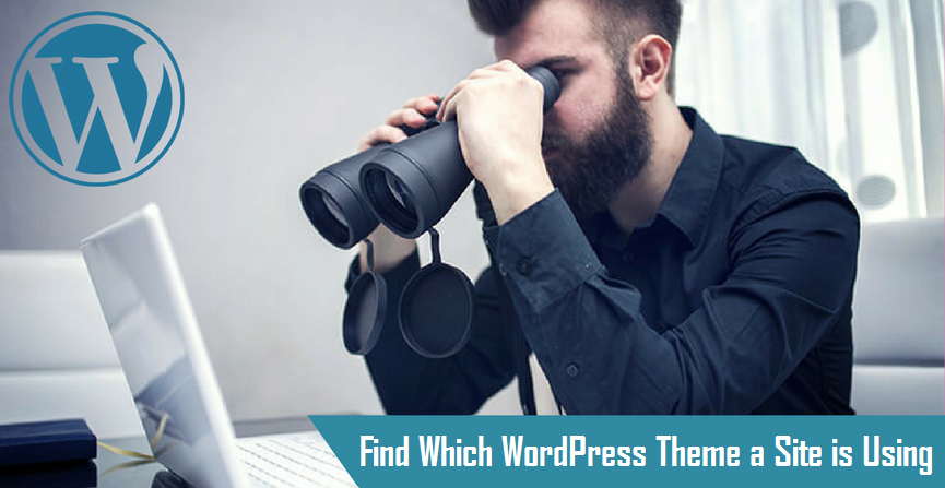 Find Which WordPress Theme a Site is Using 1