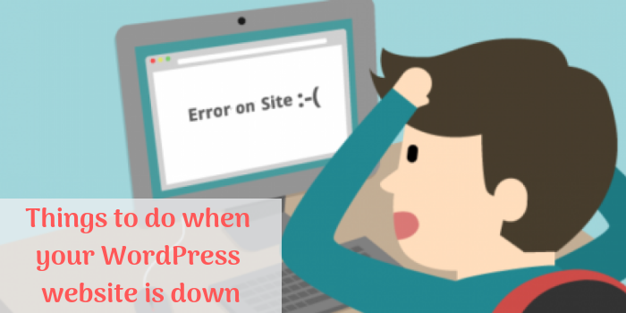 Things to do when your WordPress website is down