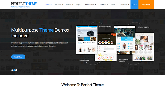SKT Perfect WordPress Theme